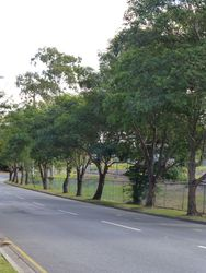Memorial Avenue : 27-May-2014