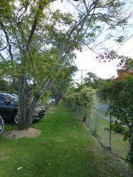 Avenue 3 : 27-May-2015