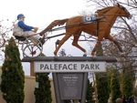 Paleface Adios : 05-August-2014
