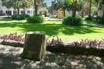 Peace Grove : 09-04-2014