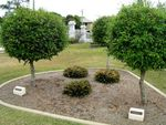 Pine Rivers District RSL Memorial Gardens