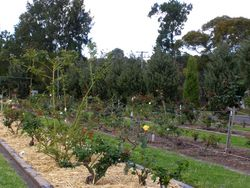 Memorial Garden 2 : 27-September-2014