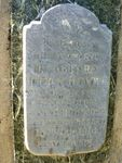 Reverend Dean Hoyne : 30-December-2012
