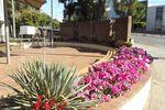 Rockdale Memorial Garden 3 : August-2014