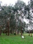 Rotary Club Arboretum : 09-June-2012