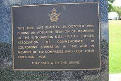 18 Squadron NE1 Plaque : 16-November-2014