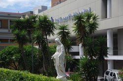 Statue 2 : 18-February-2015
