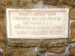 The Babies Garden : 01-December-2012