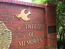 Tree 2 : 10- December-2014