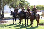 Mounted Horse Troop : 04-05-2014