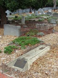 Dobney Grave : 26-February-2015