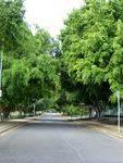 Honour Avenue : 27-05-2014